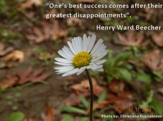 flower & quote